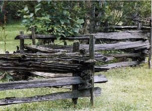 worm-fence
